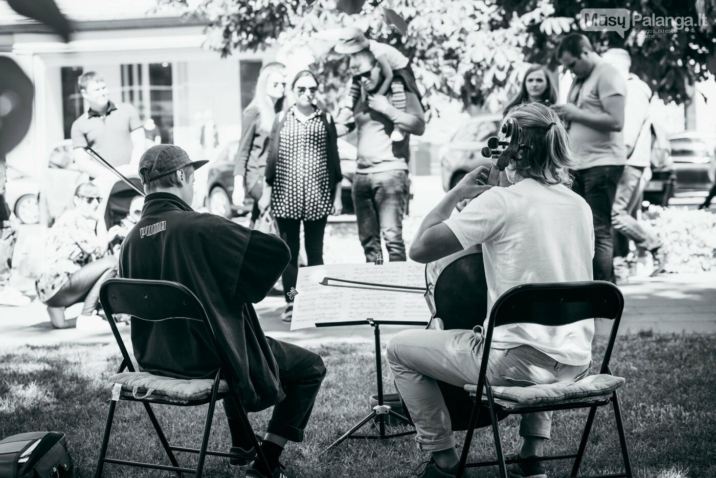 """Pradedama dalyvių registracija į """"Gatvės muzikos dieną"""", nuotrauka-6, Nendrės Žilinskaitės nuotrauka"""
