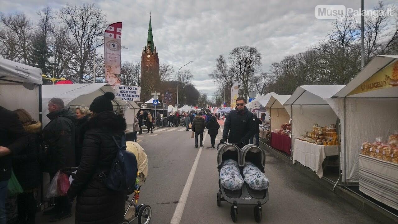 Visi keliai veda į Palangą – prasidėjo tris dienas truksianti Stintų šventė. Šventės programa, nuotrauka-20