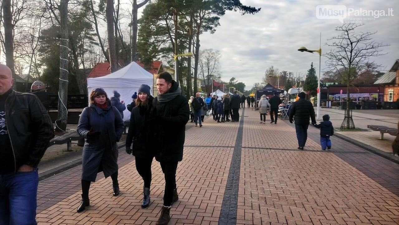 Visi keliai veda į Palangą – prasidėjo tris dienas truksianti Stintų šventė. Šventės programa, nuotrauka-36