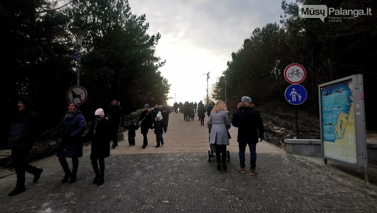 Visi keliai veda į Palangą – prasidėjo tris dienas truksianti Stintų šventė. Šventės programa, nuotrauka-72