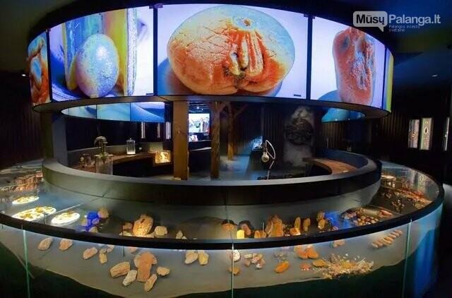 Mizgirių gintaro muziejaus archyvo nuotr.