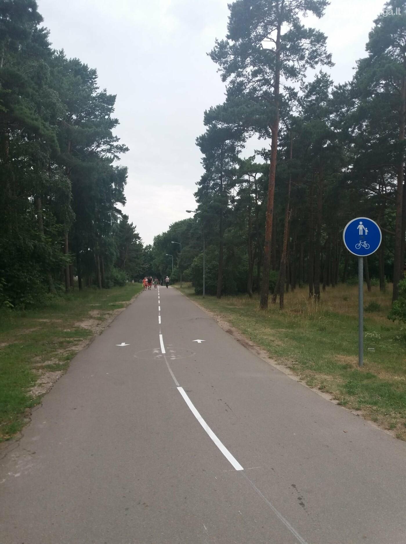 Stiprinant eismo saugumą, Naglio al., pėsčiųjų ir dviračių take vykdomas kelio ženklinimas, nuotrauka-1
