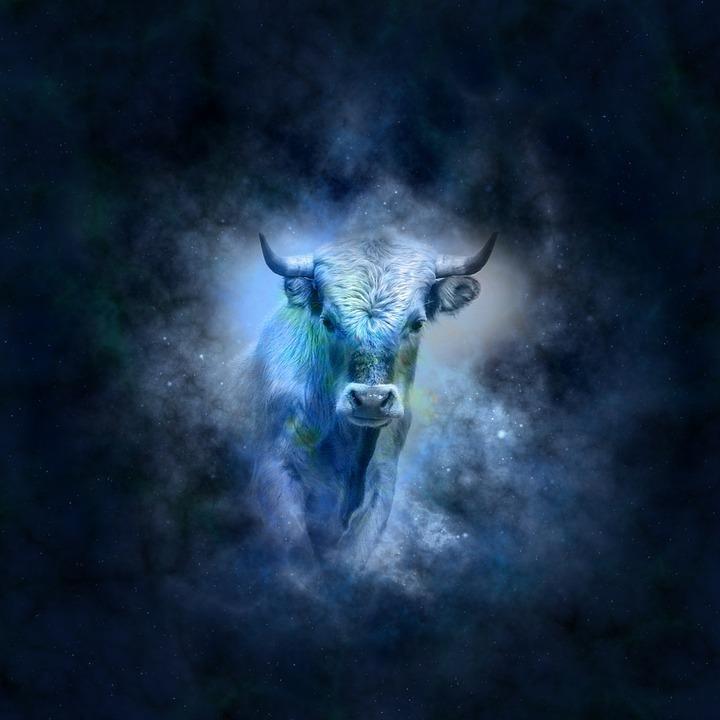 Zodiako ženklų charakteristika. Jautis, nuotrauka-1