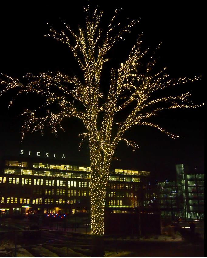 Jau po savaitės: žiemos šventės į Palangą atsiris dar niekur neregėta šviesų banga, nuotrauka-3