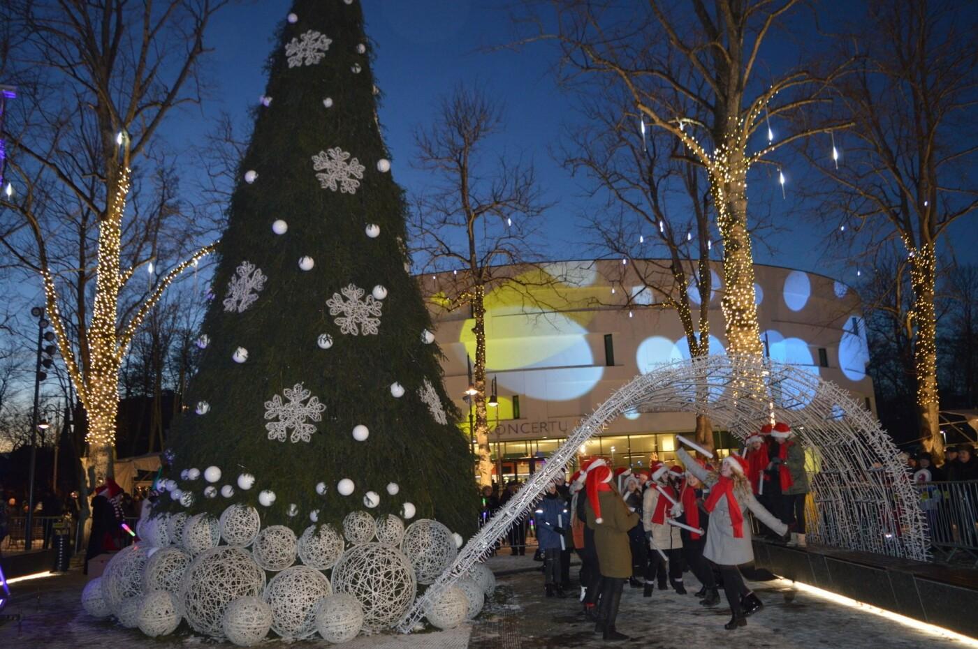 Palanga įžiebė eglę ir suspindo tūkstančiais kalėdinių šviesų, nuotrauka-14