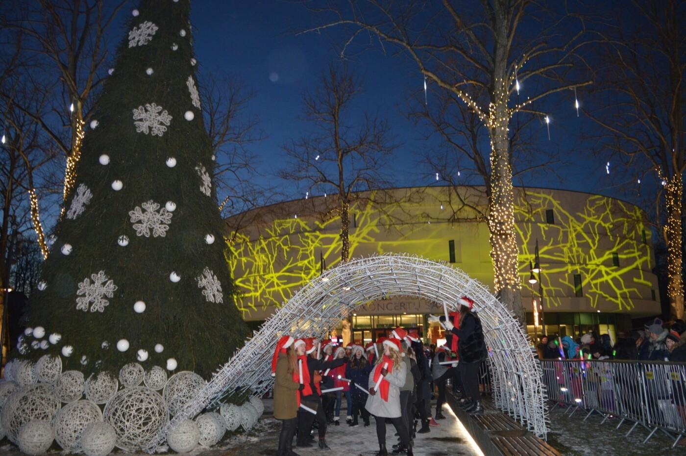 Palanga įžiebė eglę ir suspindo tūkstančiais kalėdinių šviesų, nuotrauka-35