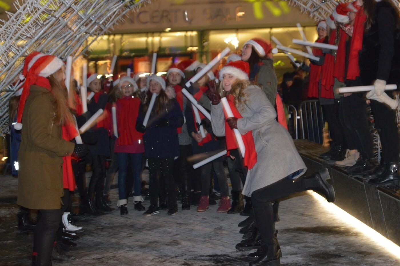 Palanga įžiebė eglę ir suspindo tūkstančiais kalėdinių šviesų, nuotrauka-19