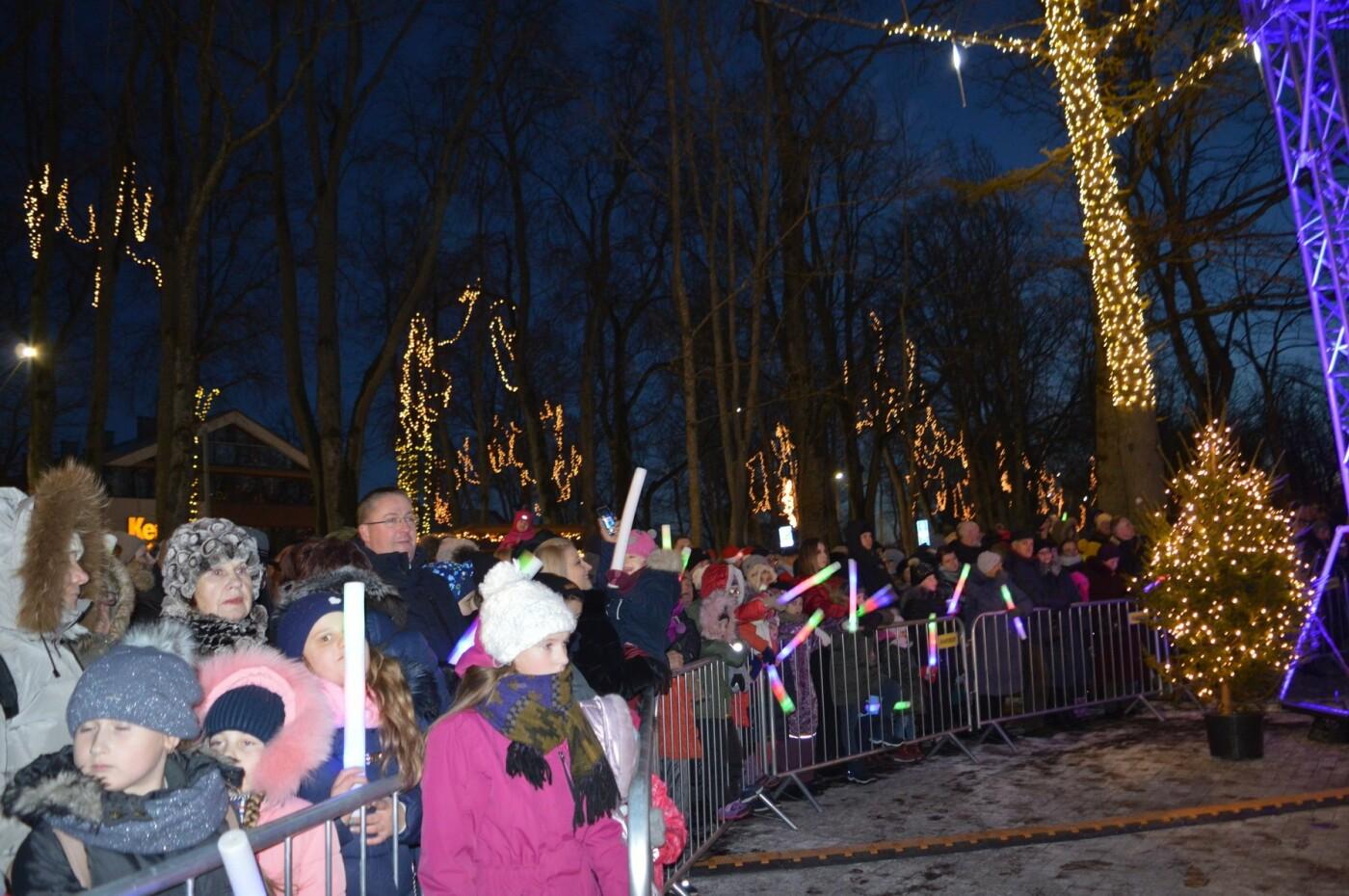 Palanga įžiebė eglę ir suspindo tūkstančiais kalėdinių šviesų, nuotrauka-30