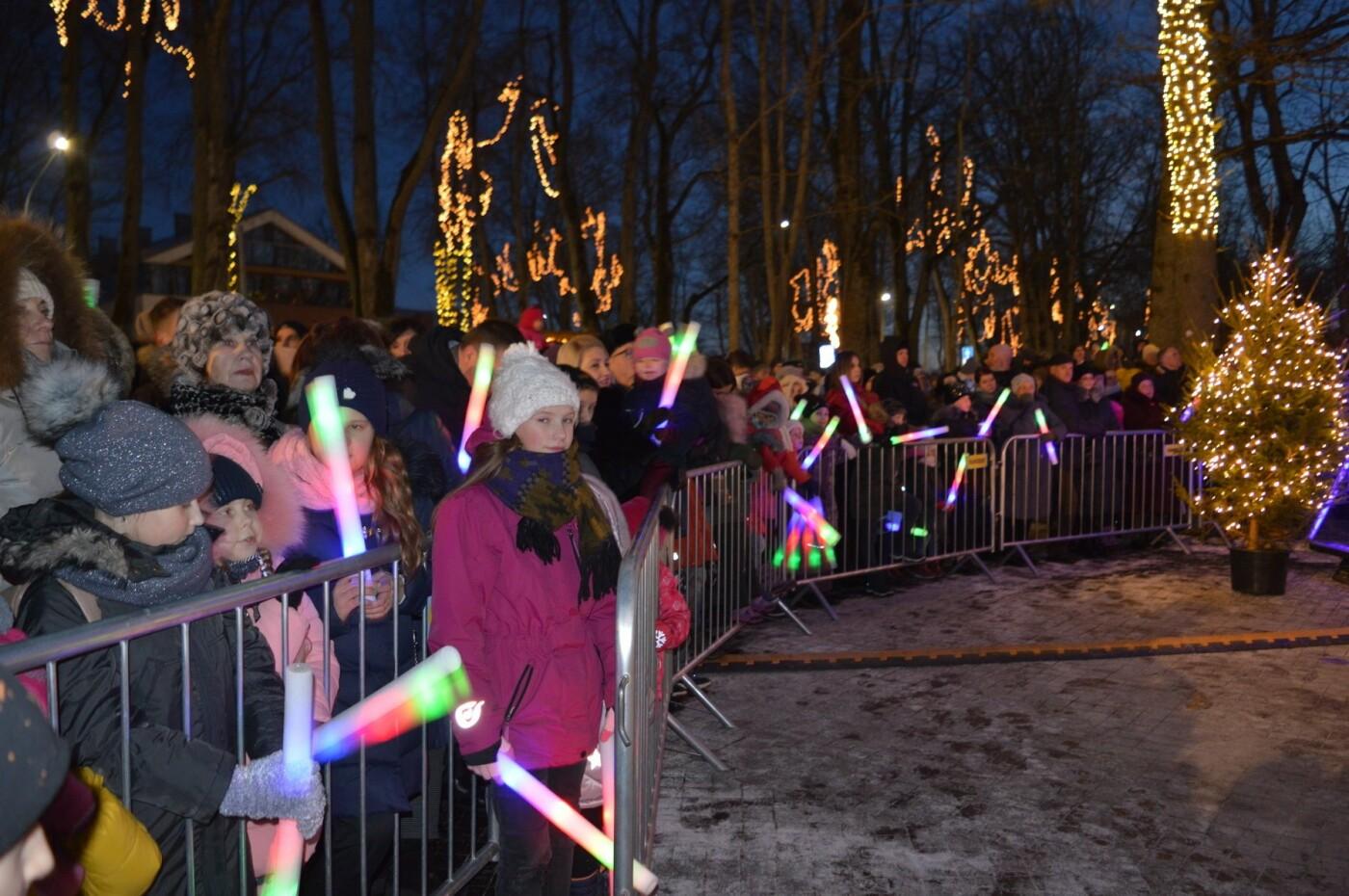 Palanga įžiebė eglę ir suspindo tūkstančiais kalėdinių šviesų, nuotrauka-50