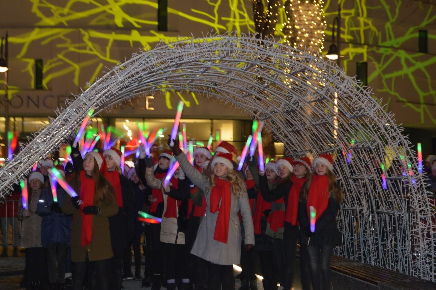 Palanga įžiebė eglę ir suspindo tūkstančiais kalėdinių šviesų, nuotrauka-21