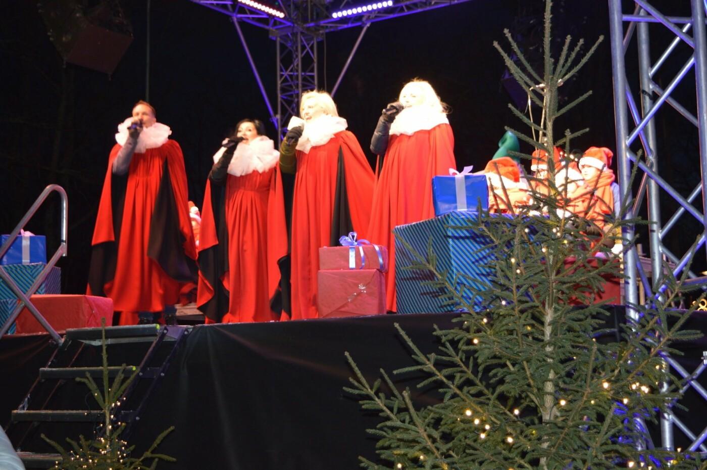 Palanga įžiebė eglę ir suspindo tūkstančiais kalėdinių šviesų, nuotrauka-38