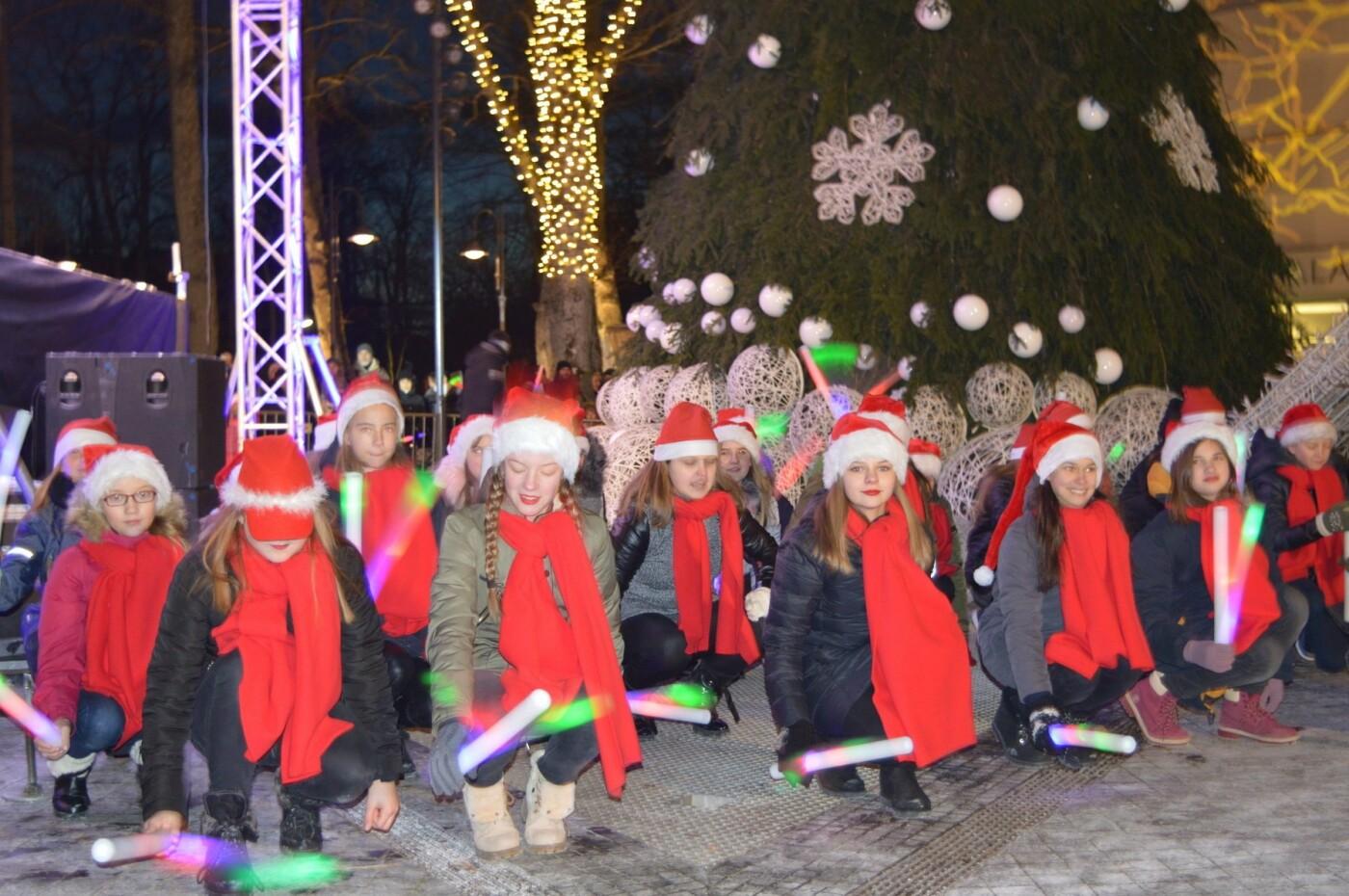 Palanga įžiebė eglę ir suspindo tūkstančiais kalėdinių šviesų, nuotrauka-51