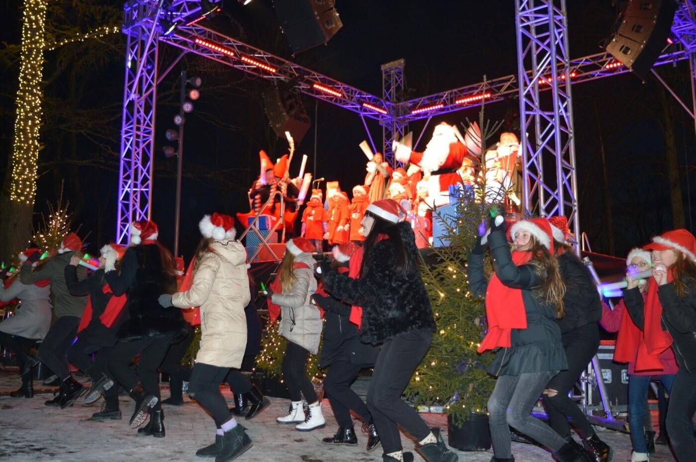 Palanga įžiebė eglę ir suspindo tūkstančiais kalėdinių šviesų, nuotrauka-64