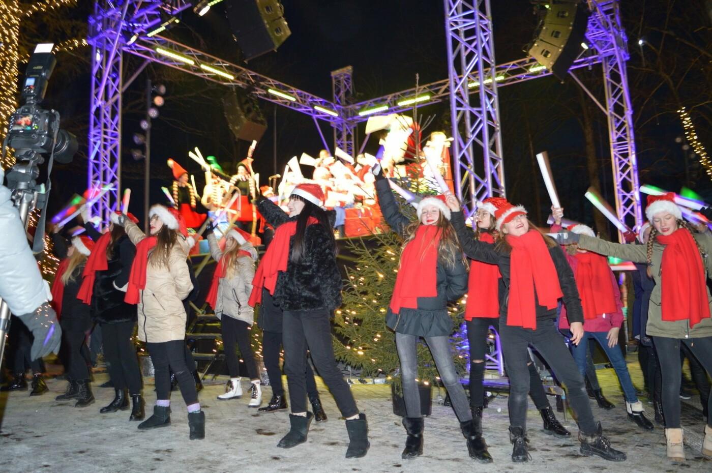 Palanga įžiebė eglę ir suspindo tūkstančiais kalėdinių šviesų, nuotrauka-49