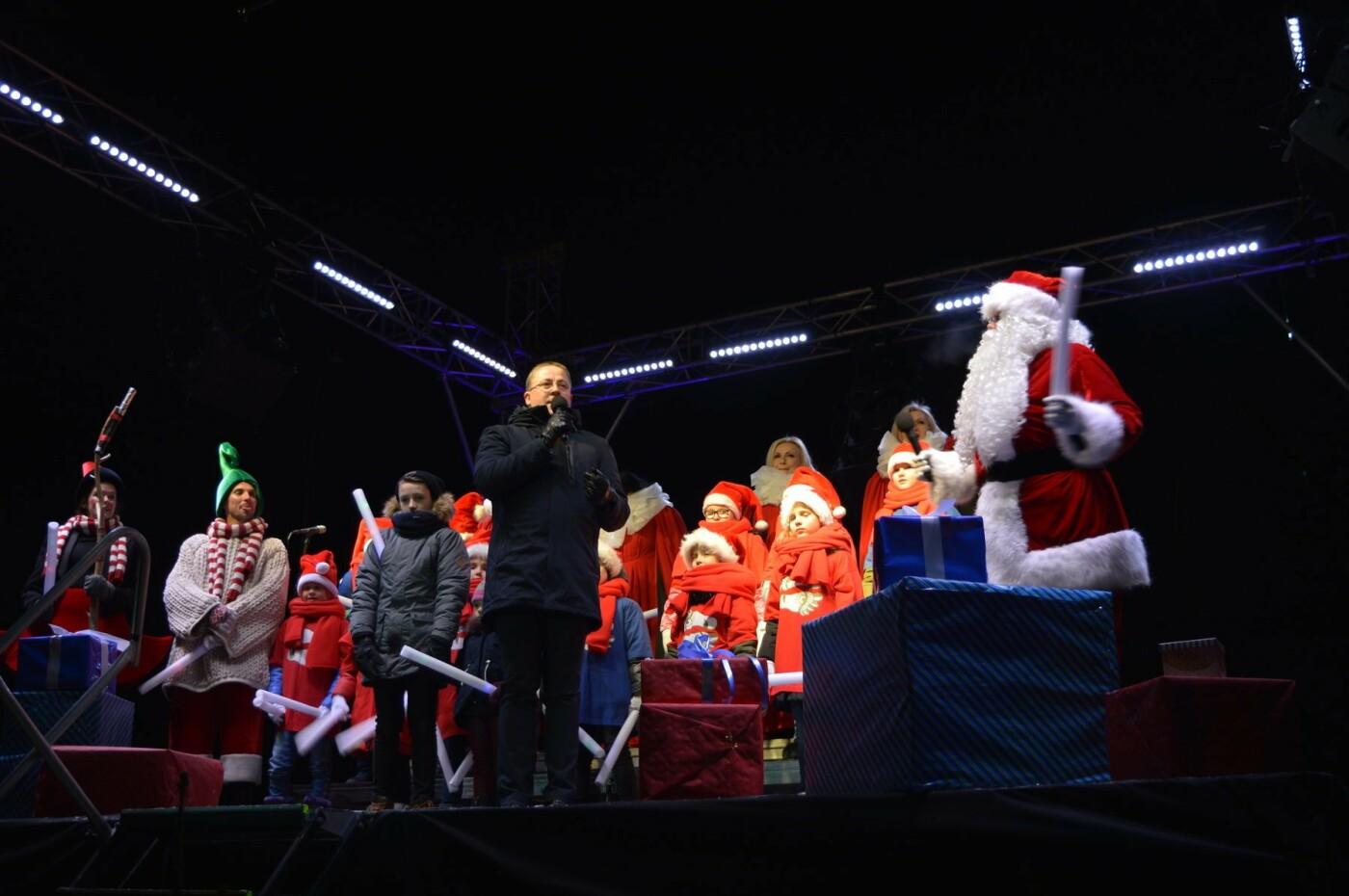 Palanga įžiebė eglę ir suspindo tūkstančiais kalėdinių šviesų, nuotrauka-1