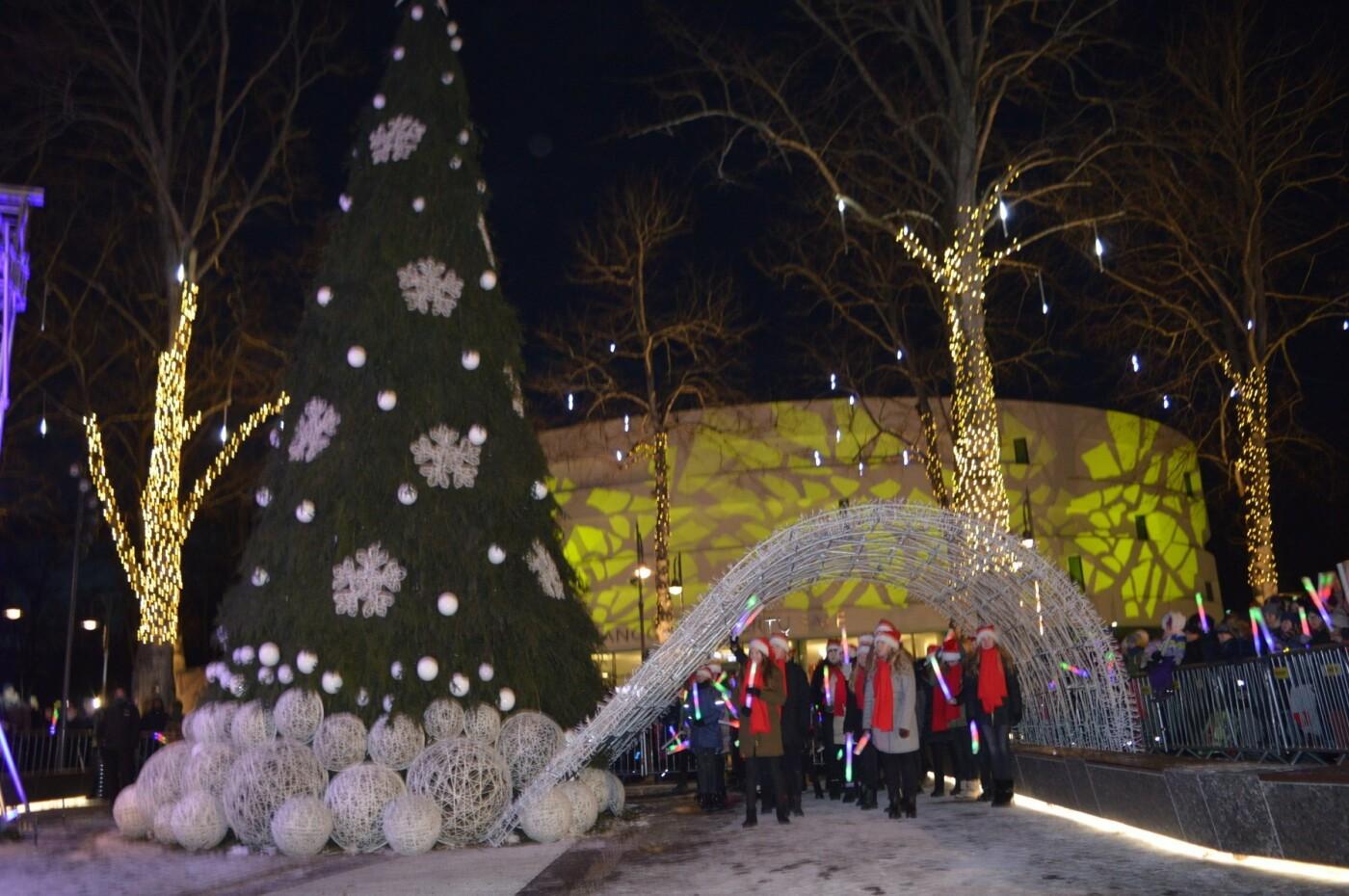 Palanga įžiebė eglę ir suspindo tūkstančiais kalėdinių šviesų, nuotrauka-46