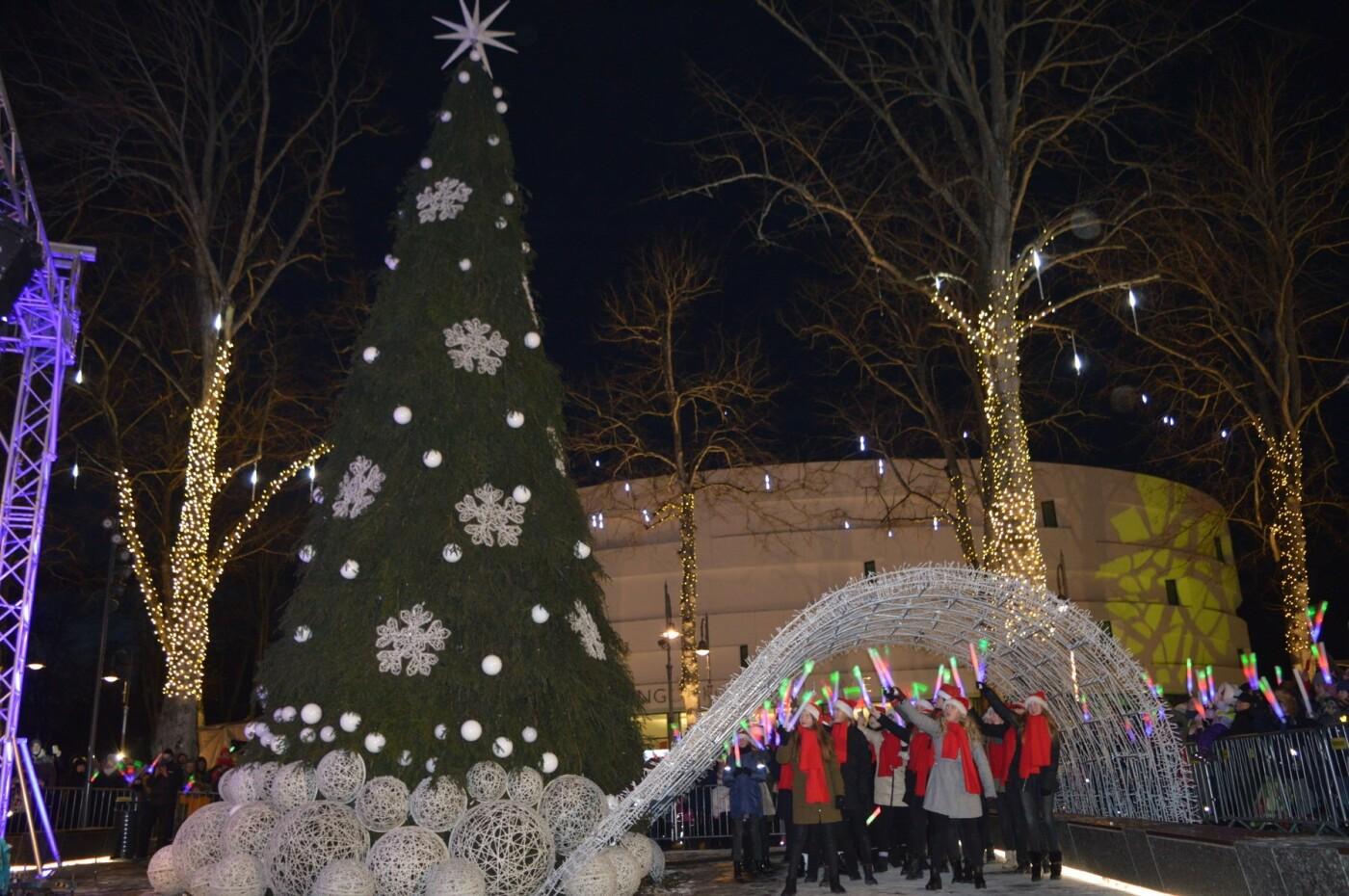Palanga įžiebė eglę ir suspindo tūkstančiais kalėdinių šviesų, nuotrauka-18
