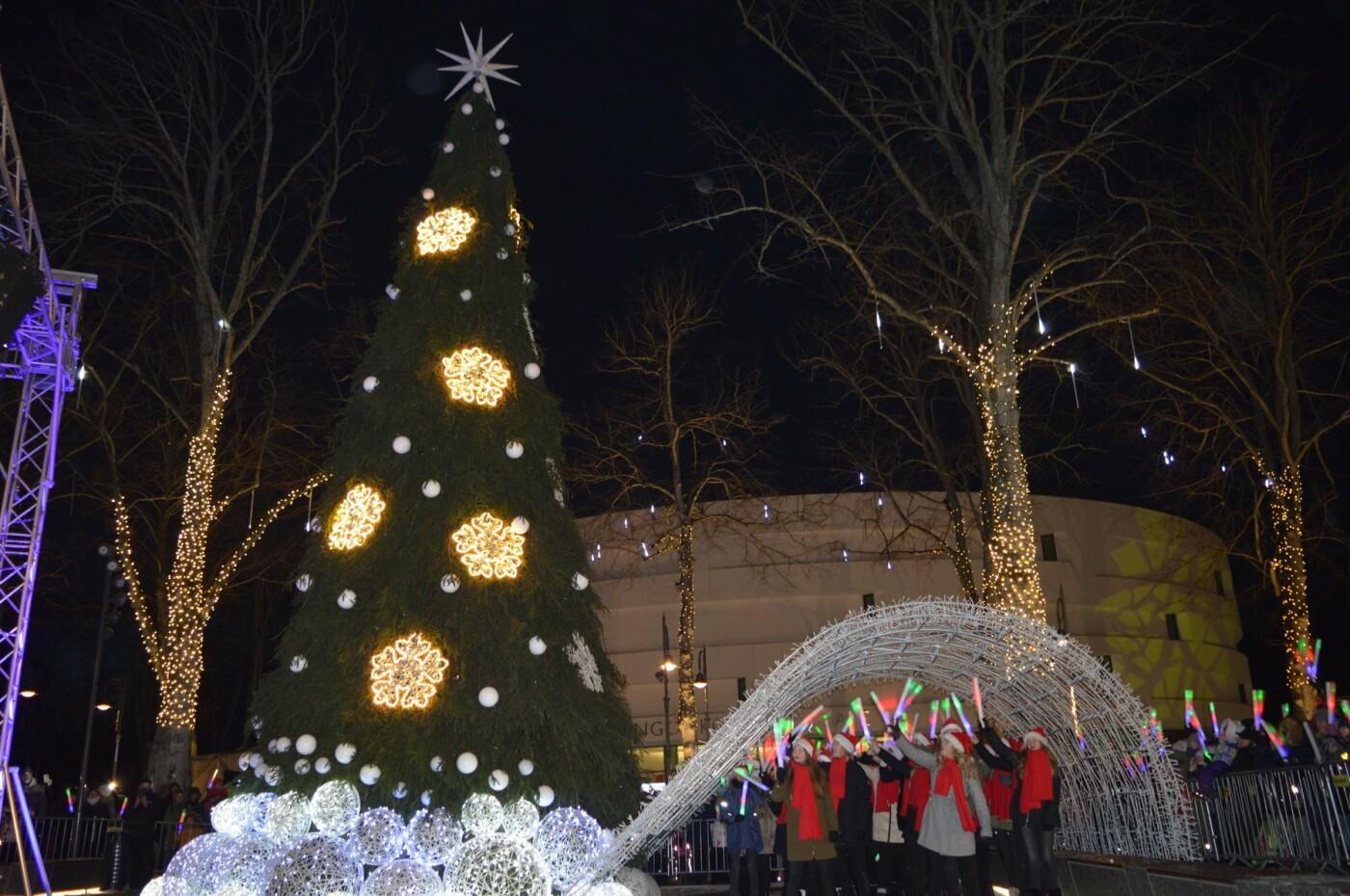 Palanga įžiebė eglę ir suspindo tūkstančiais kalėdinių šviesų, nuotrauka-83