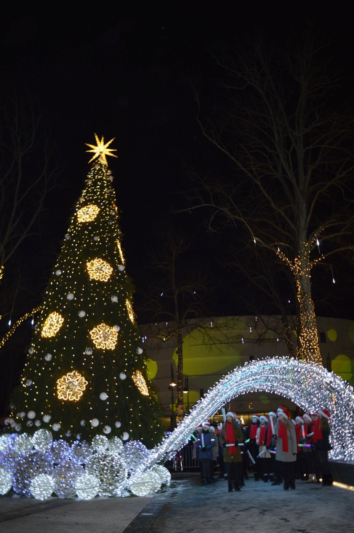 Palanga įžiebė eglę ir suspindo tūkstančiais kalėdinių šviesų, nuotrauka-81