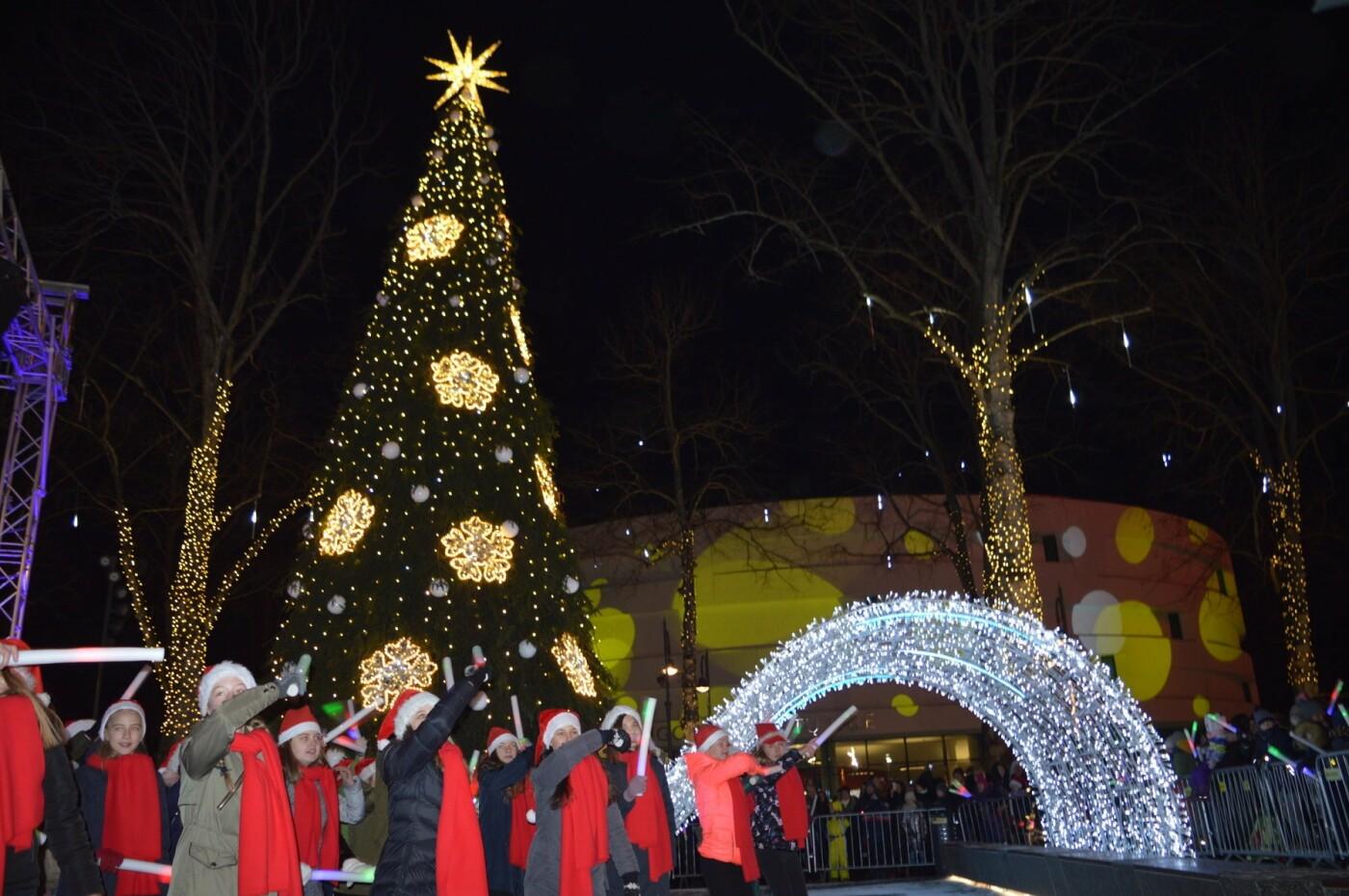 Palanga įžiebė eglę ir suspindo tūkstančiais kalėdinių šviesų, nuotrauka-70