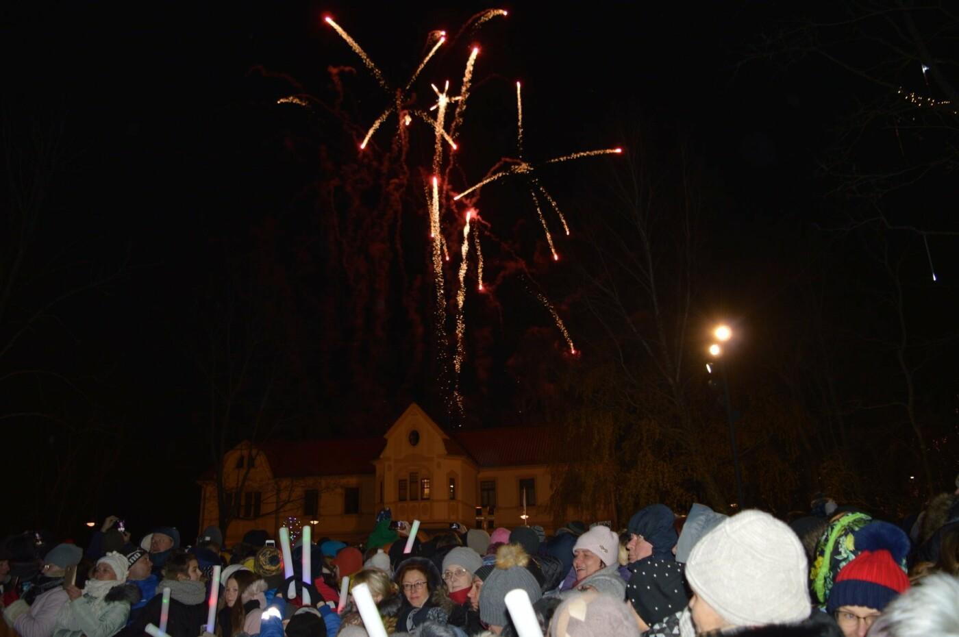 Palanga įžiebė eglę ir suspindo tūkstančiais kalėdinių šviesų, nuotrauka-2