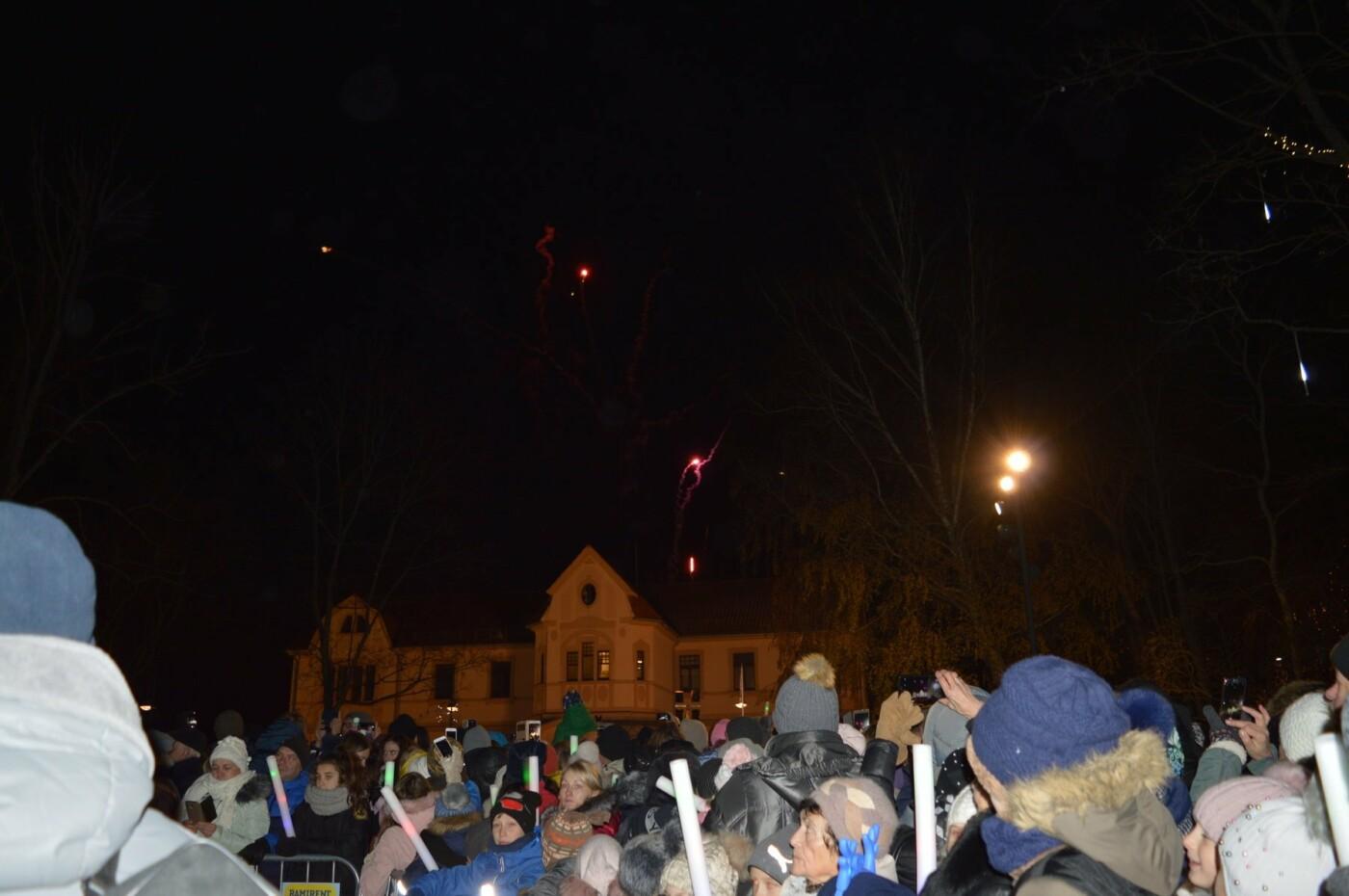 Palanga įžiebė eglę ir suspindo tūkstančiais kalėdinių šviesų, nuotrauka-3