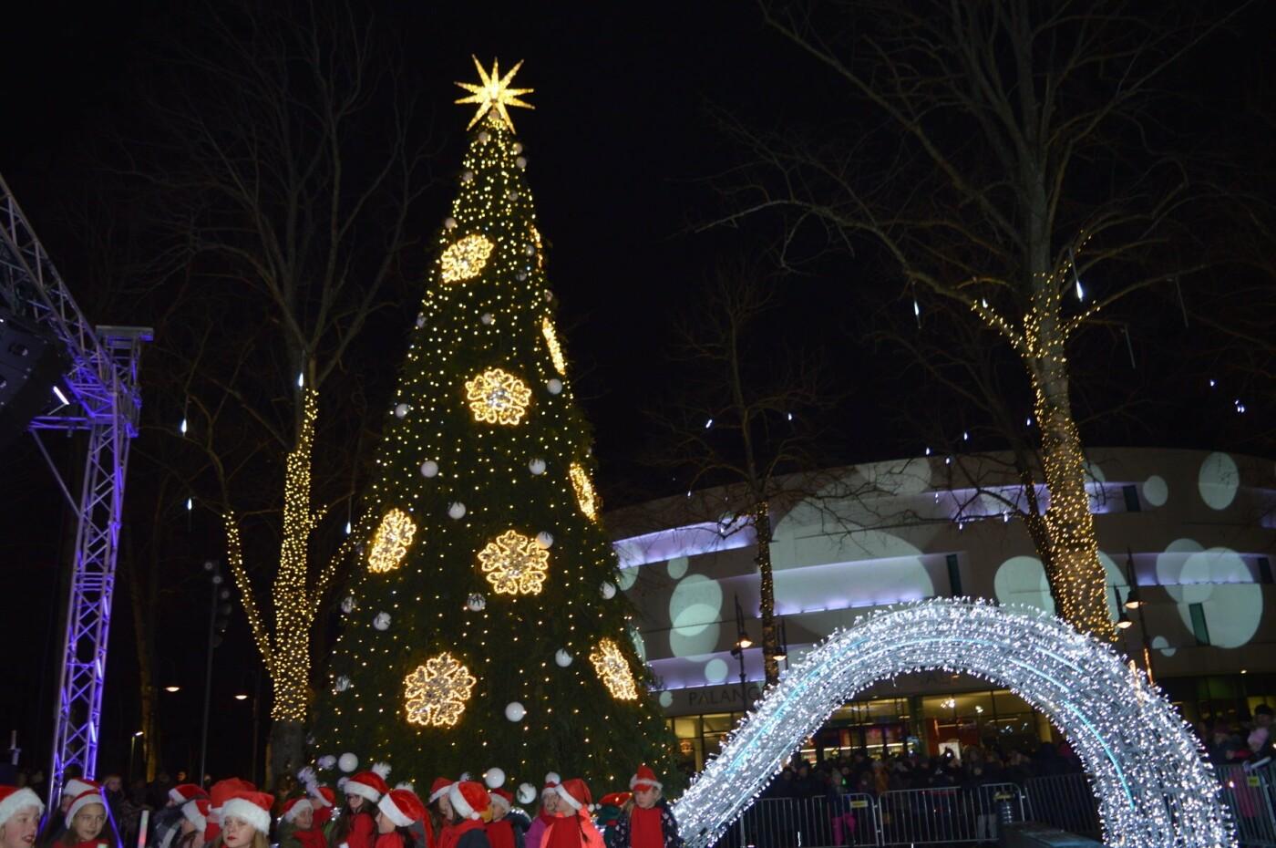 Palanga įžiebė eglę ir suspindo tūkstančiais kalėdinių šviesų, nuotrauka-77