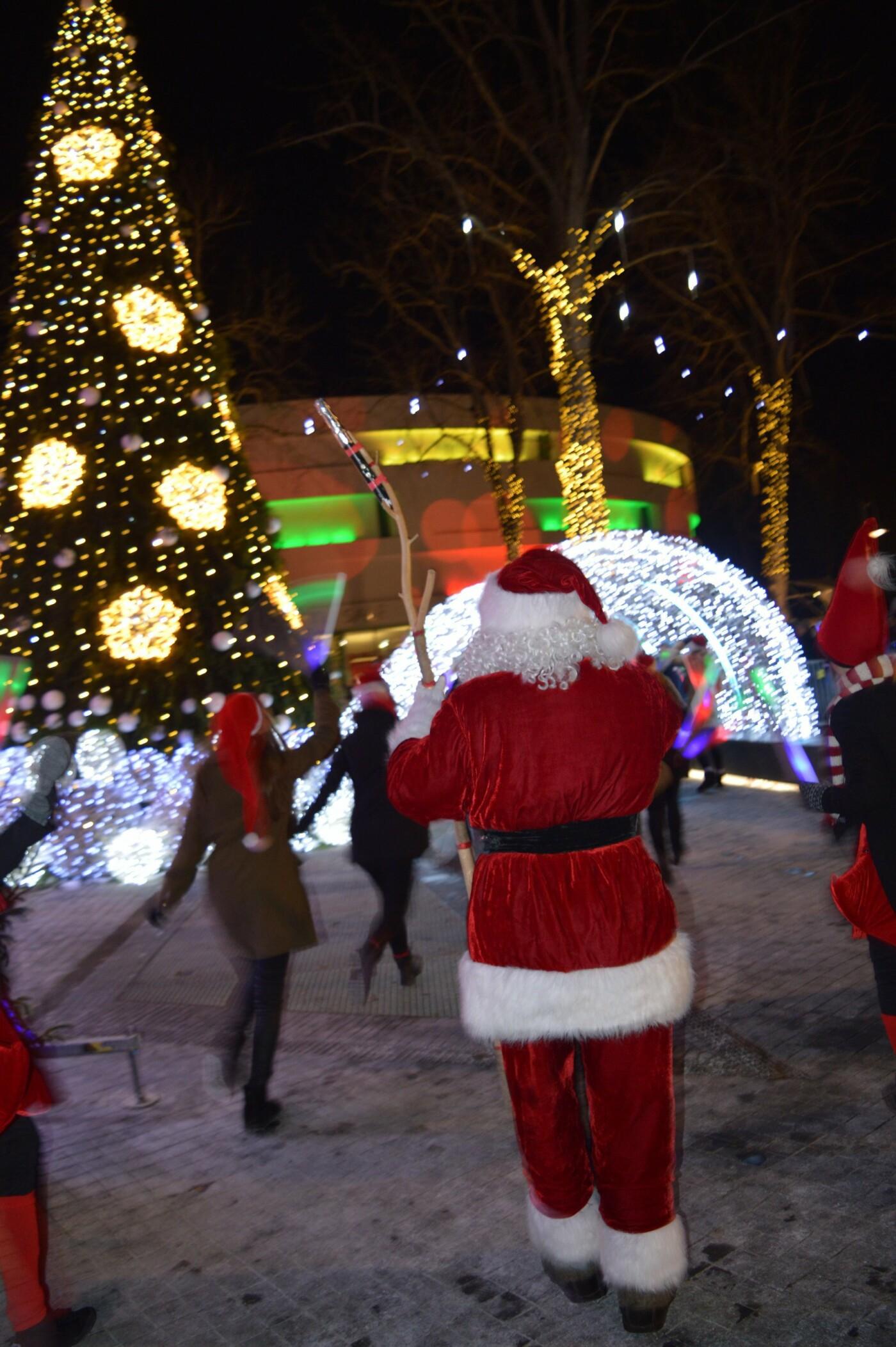 Palanga įžiebė eglę ir suspindo tūkstančiais kalėdinių šviesų, nuotrauka-12