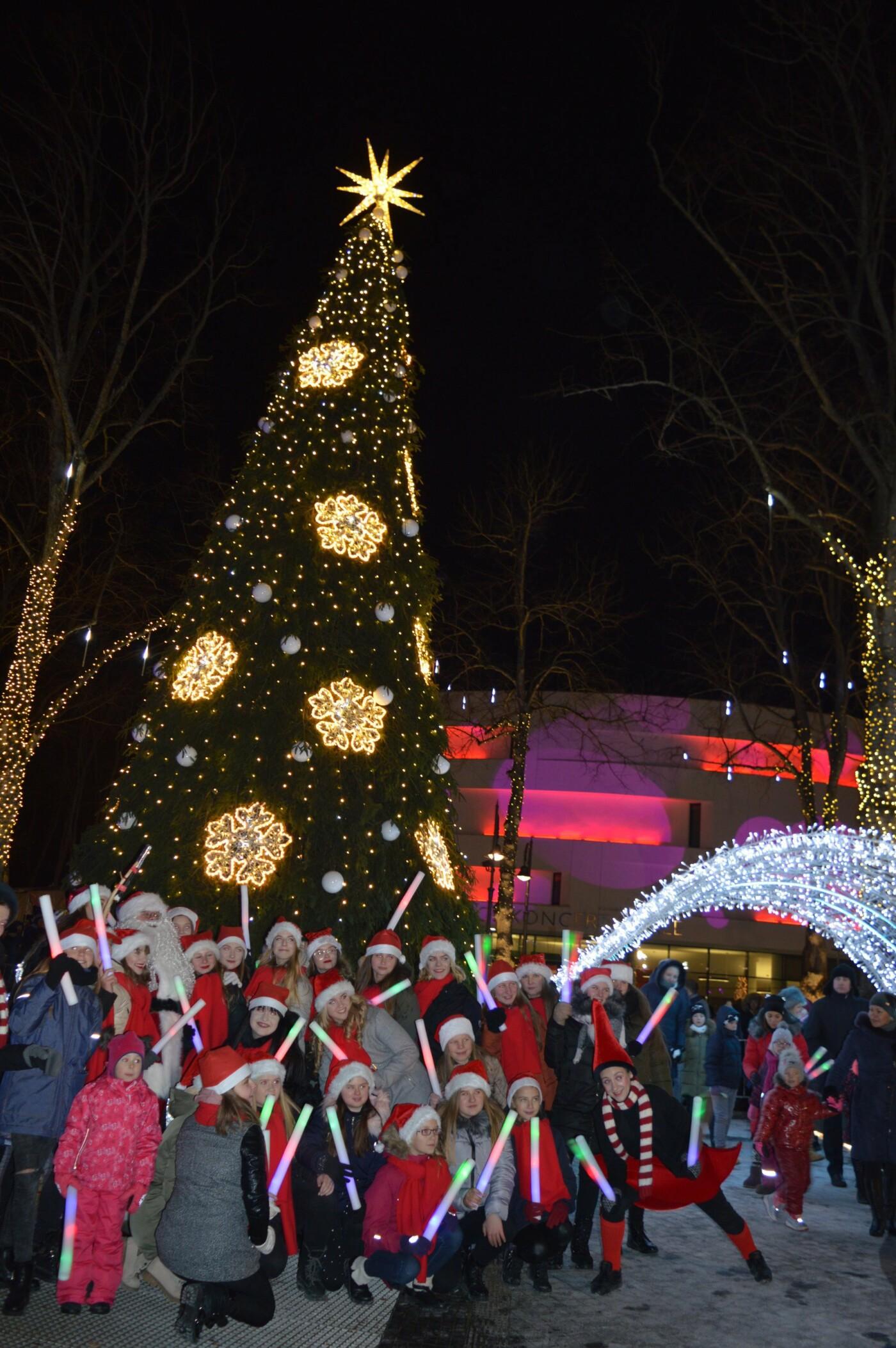 Palanga įžiebė eglę ir suspindo tūkstančiais kalėdinių šviesų, nuotrauka-22