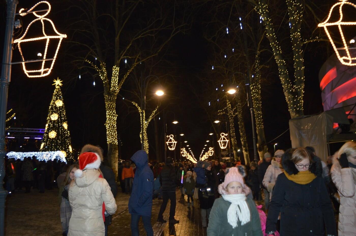 Palanga įžiebė eglę ir suspindo tūkstančiais kalėdinių šviesų, nuotrauka-75