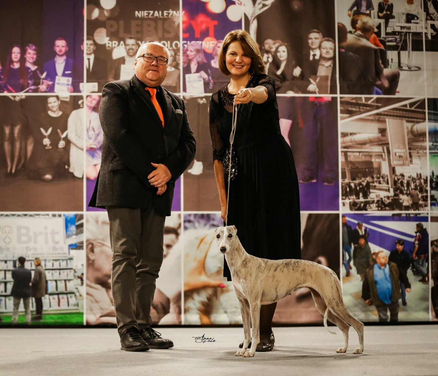 Palangiškė šunų veisėja skynė laurus Europos čempionate, nuotrauka-1